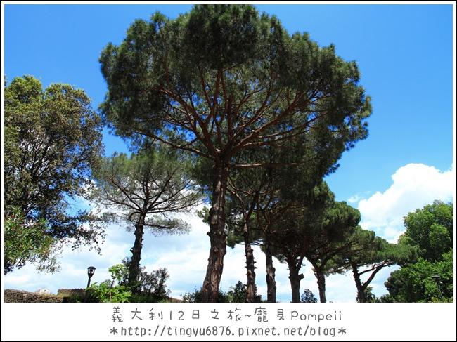 義大利-龐貝94.JPG