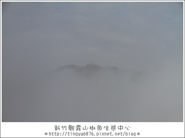 觀霧28.JPG