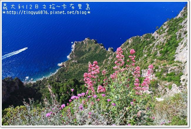 義大利-卡布里島290.JPG