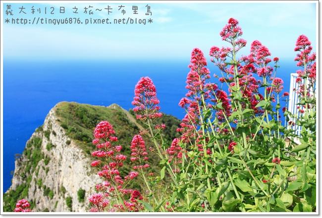 義大利-卡布里島301.JPG