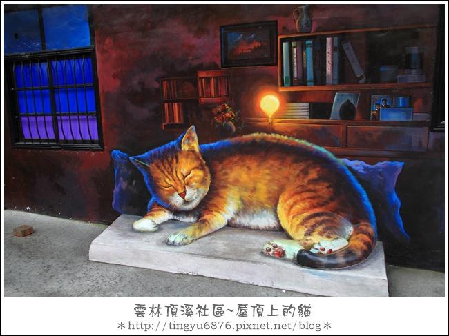 屋頂上的貓27.JPG