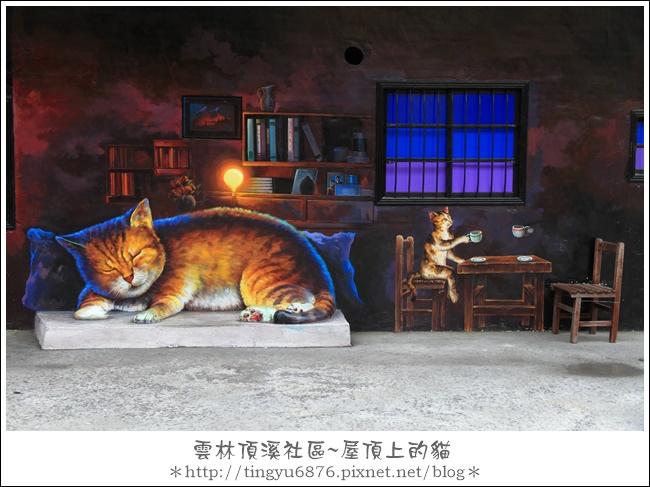 屋頂上的貓28.JPG