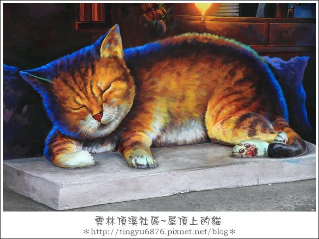 屋頂上的貓29.JPG
