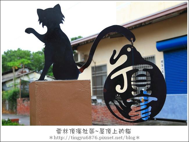 屋頂上的貓40.JPG
