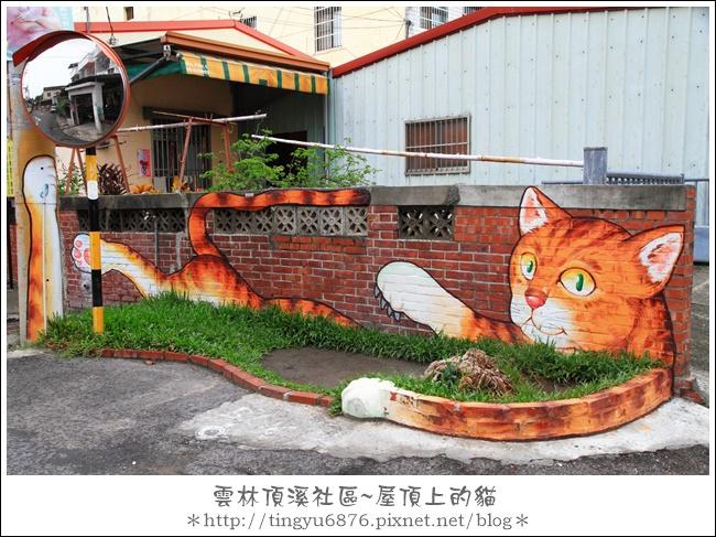 屋頂上的貓41.JPG