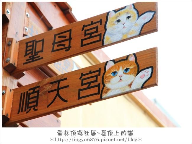 屋頂上的貓46.JPG
