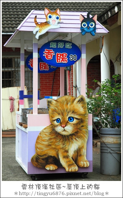 屋頂上的貓47.JPG