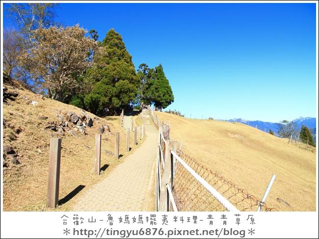 青青草原15.JPG