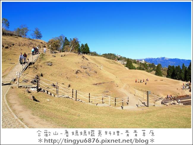 青青草原24.JPG