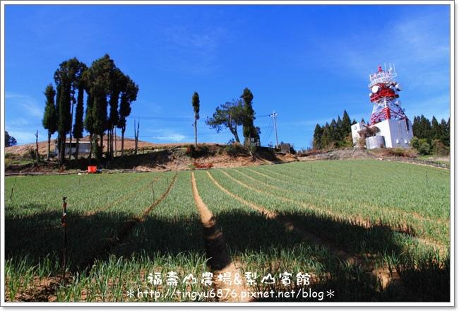 福壽山農場05.JPG