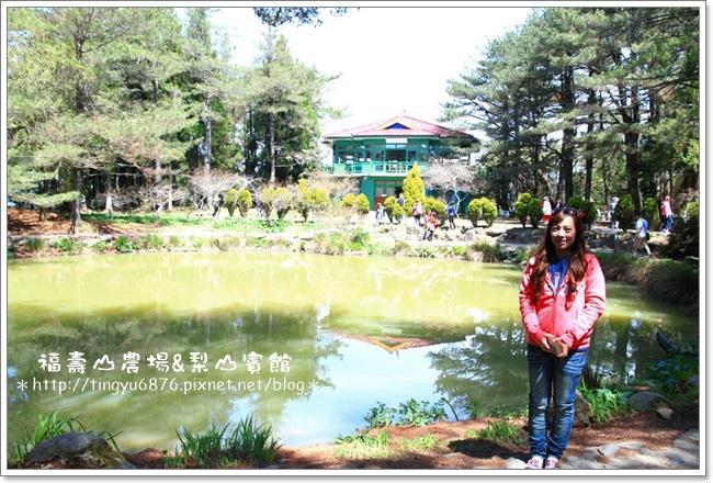 福壽山農場26.JPG