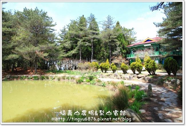 福壽山農場56.JPG