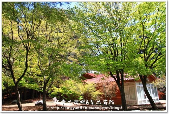 福壽山農場118.JPG