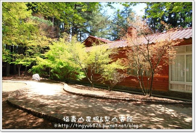 福壽山農場119.JPG