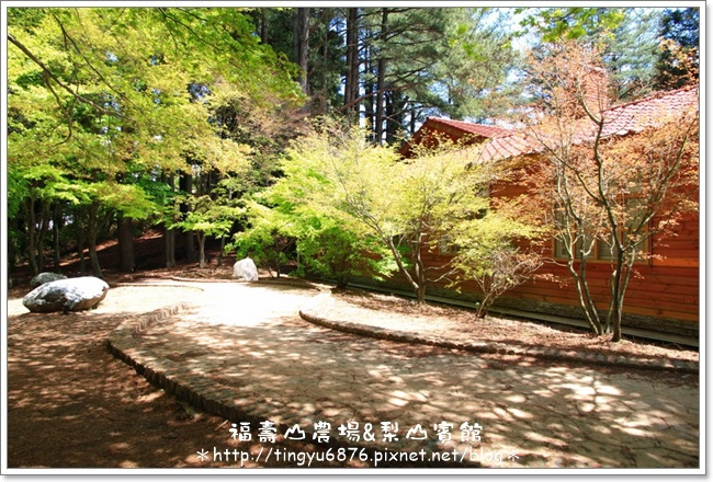 福壽山農場124.JPG