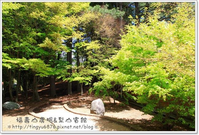 福壽山農場127.JPG
