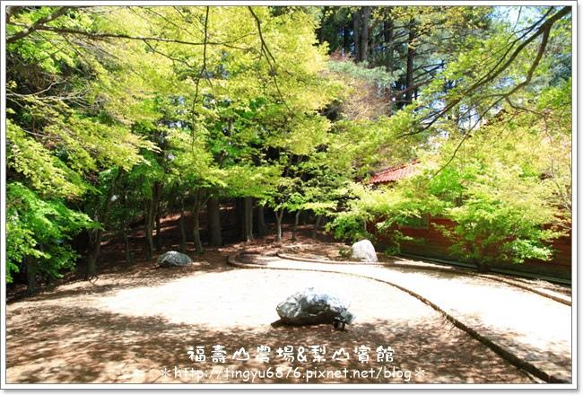 福壽山農場133.JPG
