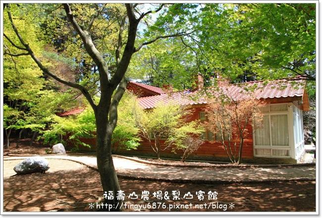 福壽山農場134.JPG