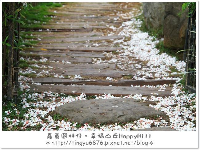 幸福山丘12.JPG
