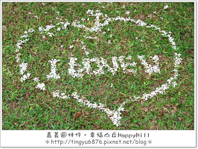 幸福山丘21.JPG