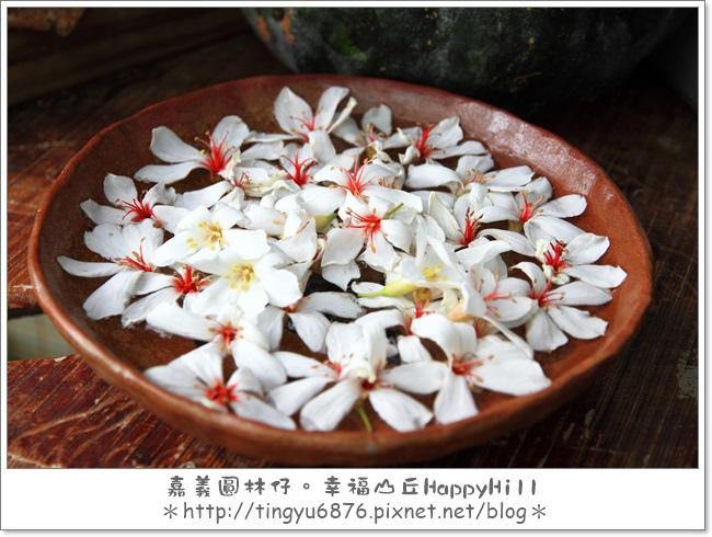 幸福山丘51.JPG