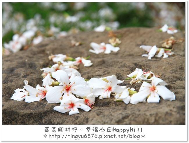 幸福山丘58.JPG