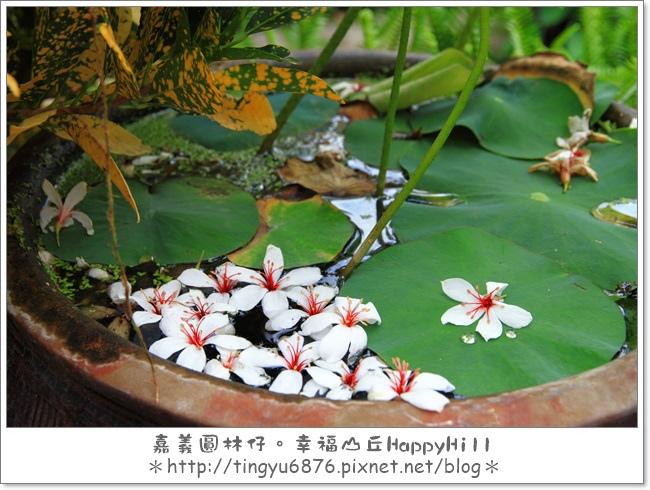 幸福山丘65.JPG
