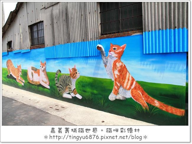 菁埔貓村12.JPG