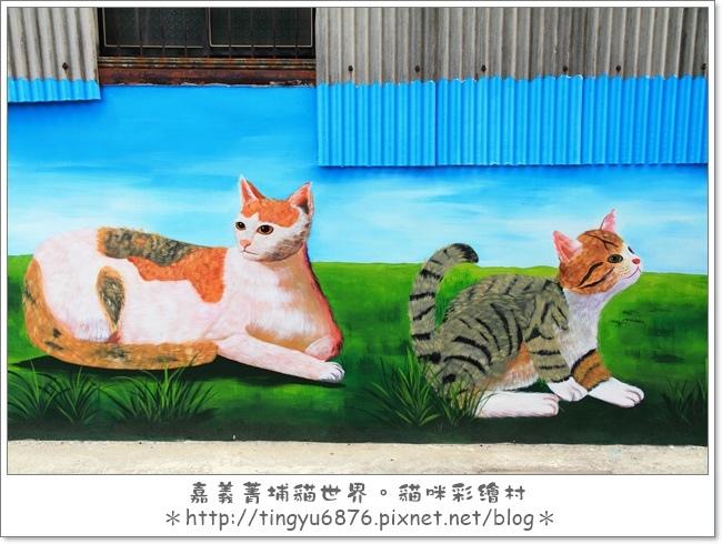 菁埔貓村14.JPG