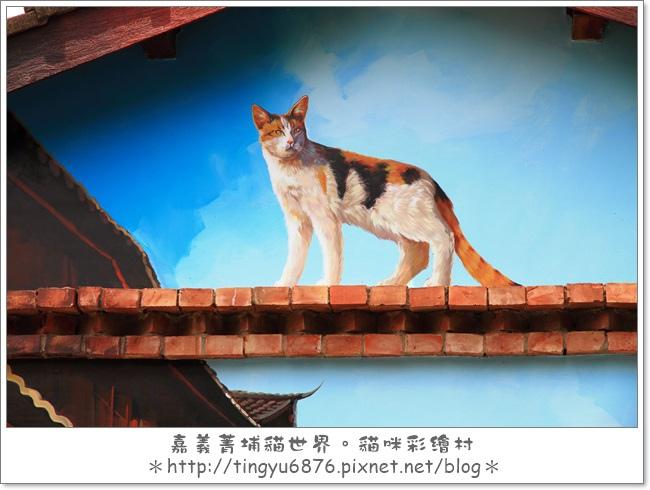 菁埔貓村39.JPG