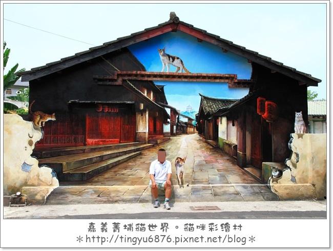 菁埔貓村48