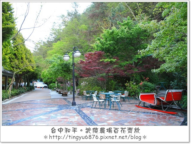 武陵農場112.JPG
