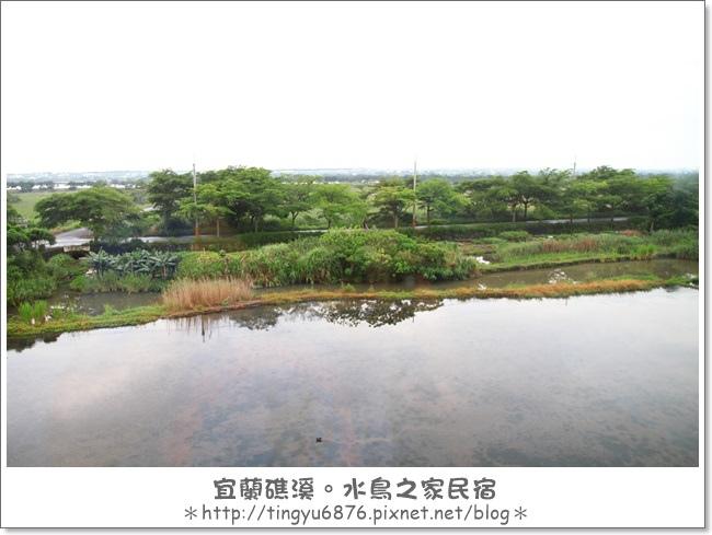 水鳥之家民宿06.JPG