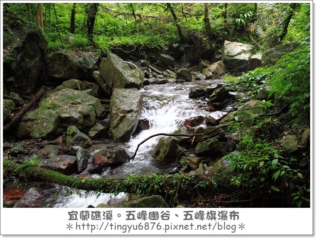 五峰幽谷51.JPG