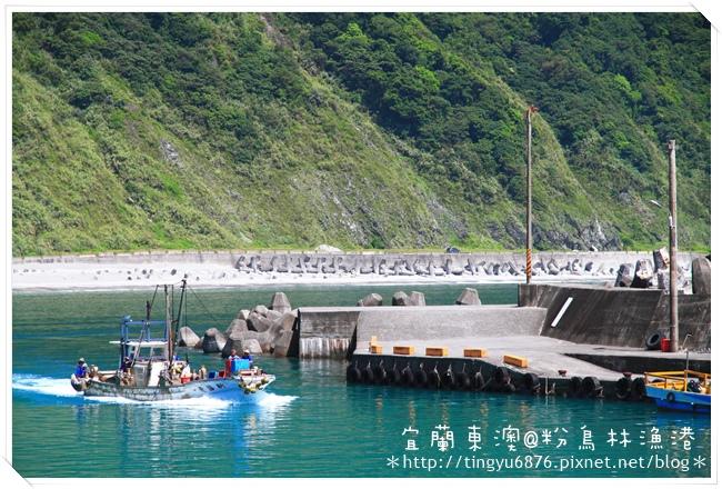 粉鳥林漁港18.JPG