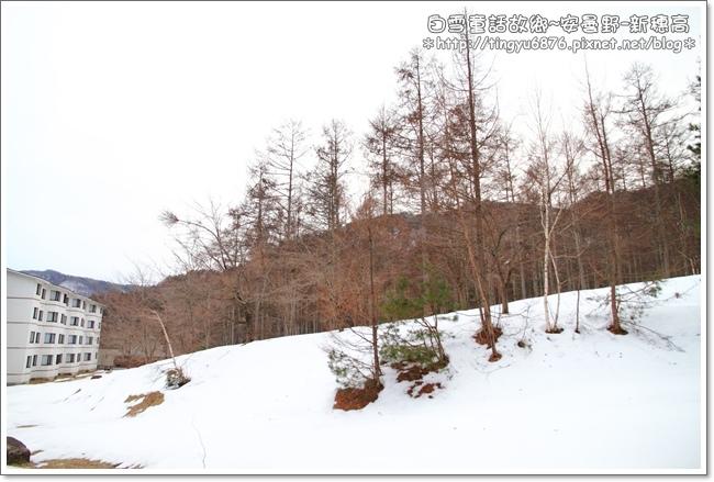 安曇野市-新穗高13.JPG