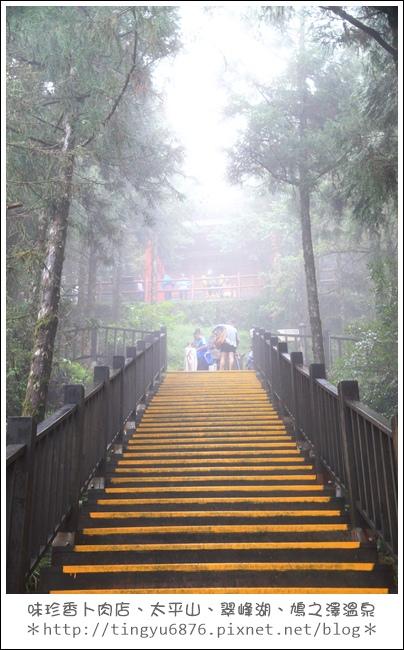 太平山31.JPG