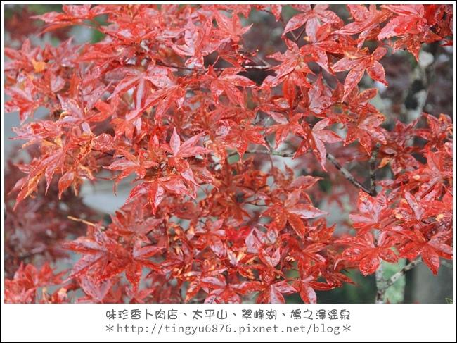 太平山49.JPG