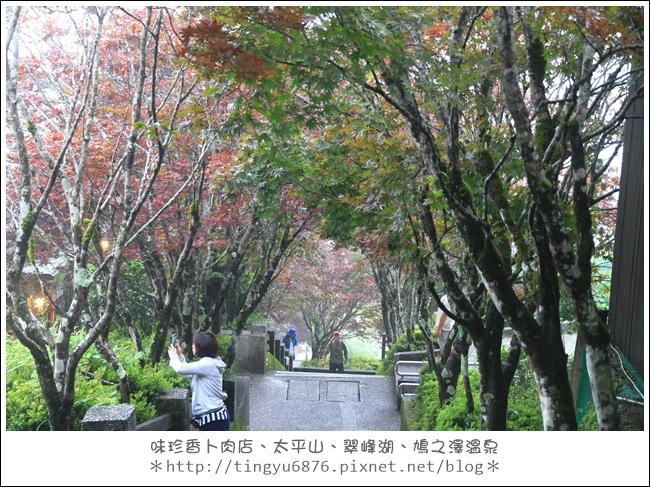 太平山61.JPG