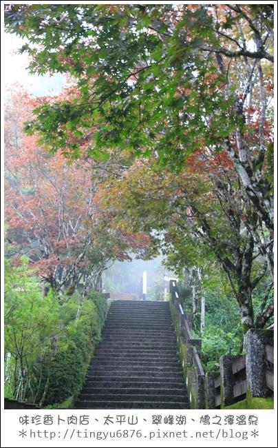 太平山62.JPG