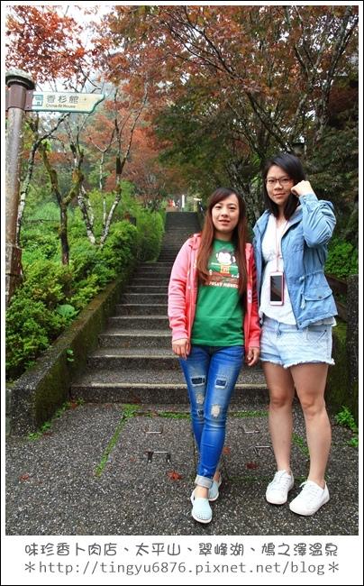 太平山76.JPG