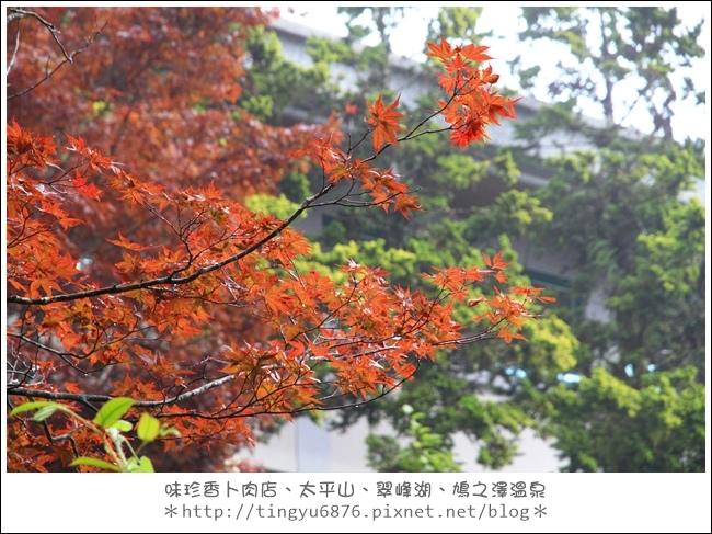 太平山78.JPG