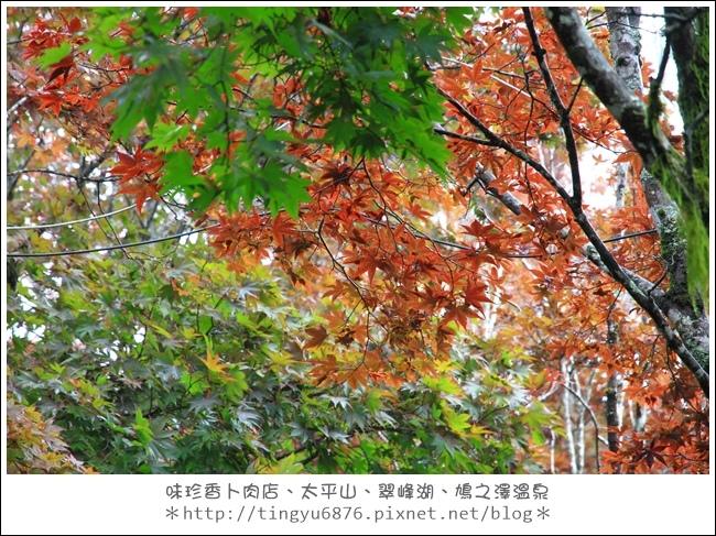 太平山80.JPG