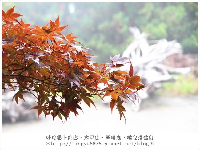 太平山83.JPG