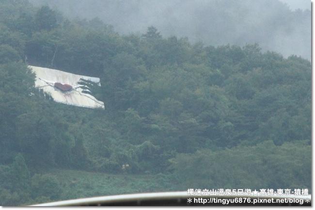 高雄-八岳18.JPG