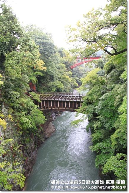高雄-八岳35.JPG