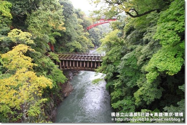 高雄-八岳37.JPG