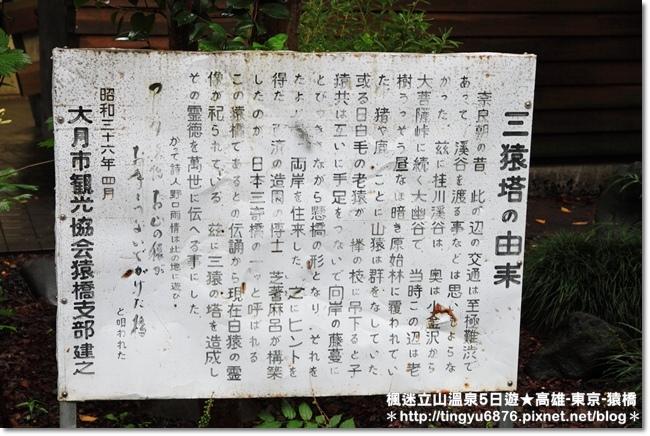 高雄-八岳51.JPG
