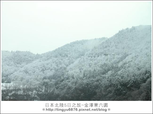兼六園10.JPG