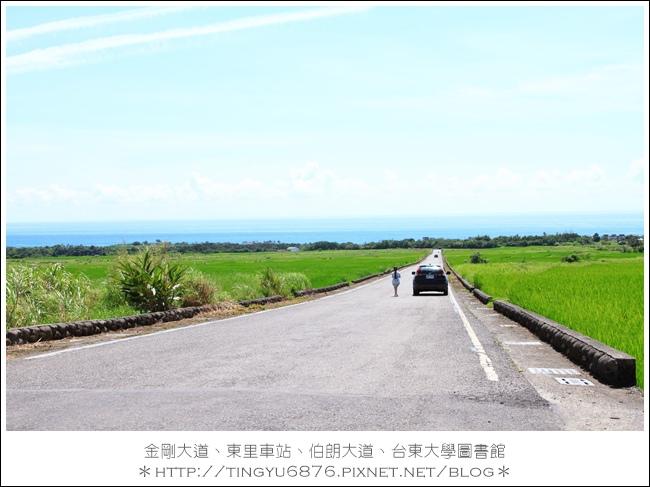 金剛大道35.JPG